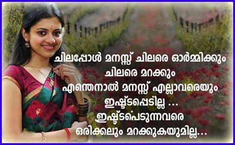 Malayalam Love Quotes Prepossessing Malayalam Love Quotes  Malayalam Dp