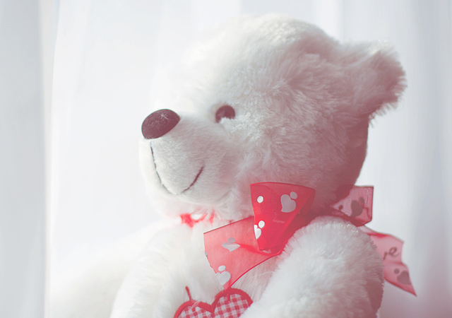 teddy bear profile pictures dp for whatsapp, facebook