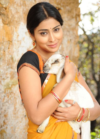 Shriya Saran  profile pictures