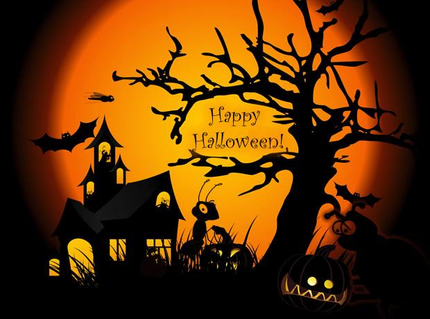 Halloween profile pics dp for whatsapp