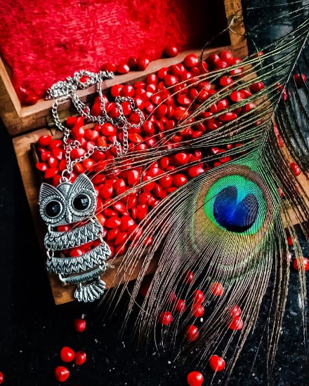 peacock feather, mayilpeeli, manjadikuru, appooppan thaadi