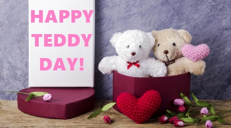 teddy day profile pics